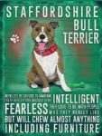 Bull Terrier Metal Plaque Dog Pet Sign Animal Wall Art